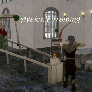 Avalon's training