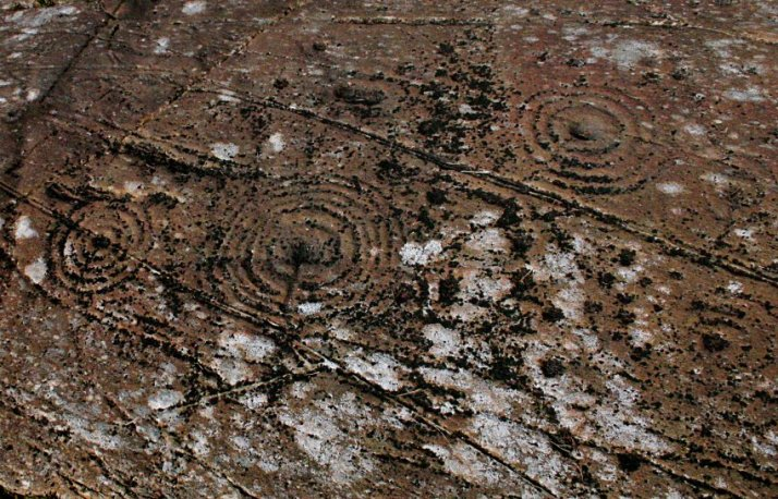 stone with cup and ring marks near by Dunnad
