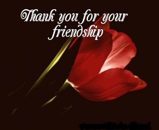 friendship-8070