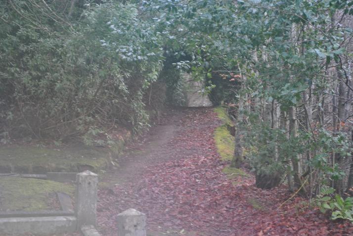 tomnahurich-graveyard-inverness-19