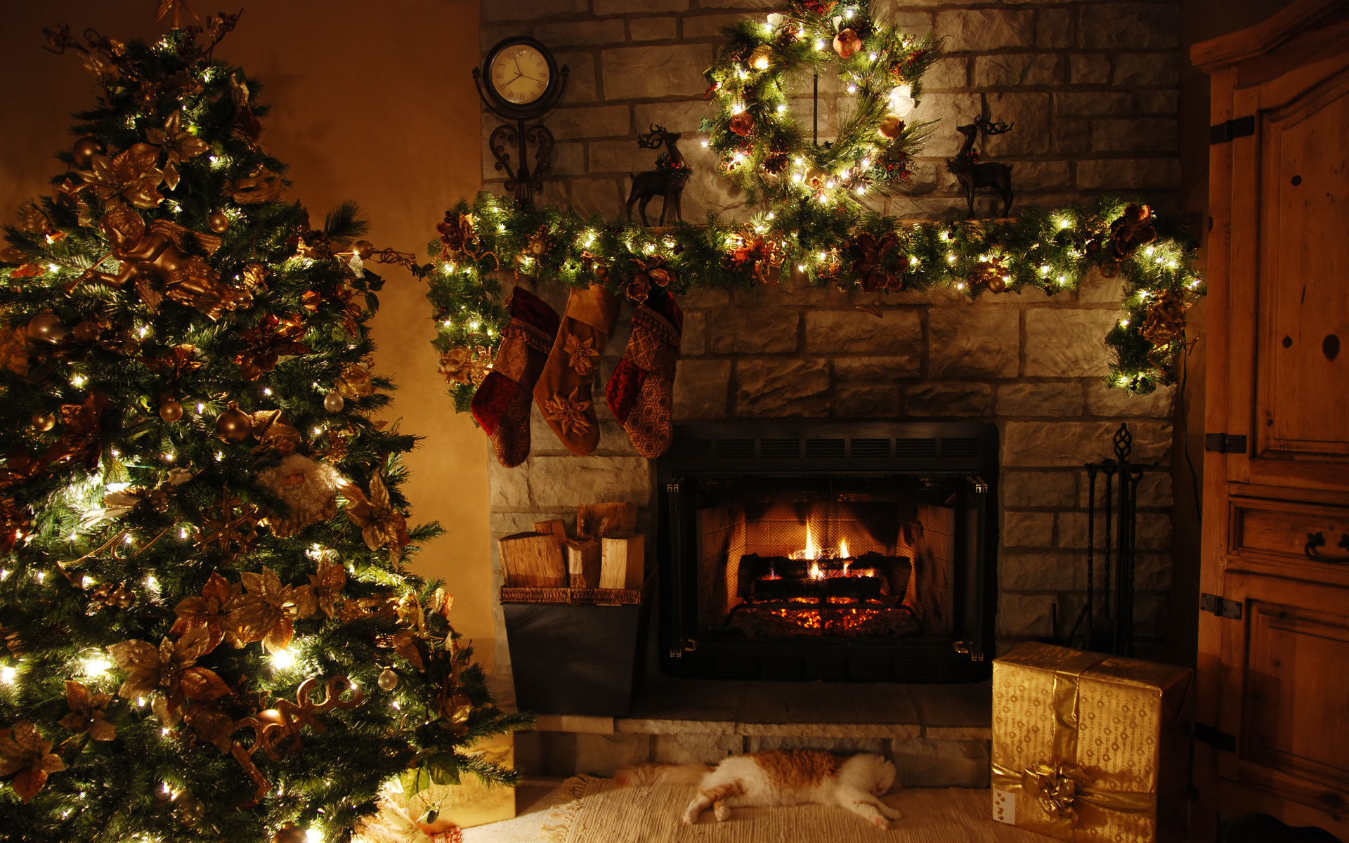 Time Traveler's guide to Christmas: Oh Christmas Tree ...