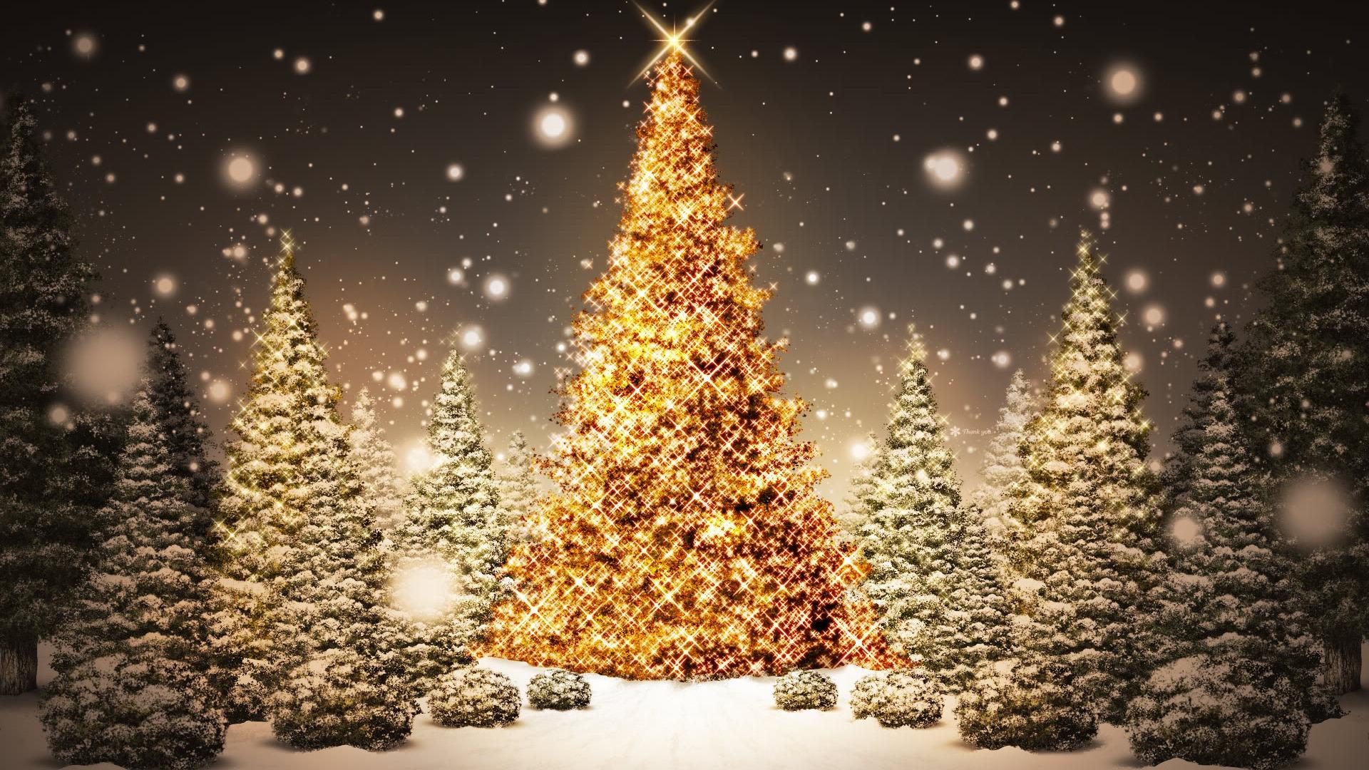 christmas tree history | Time Slips