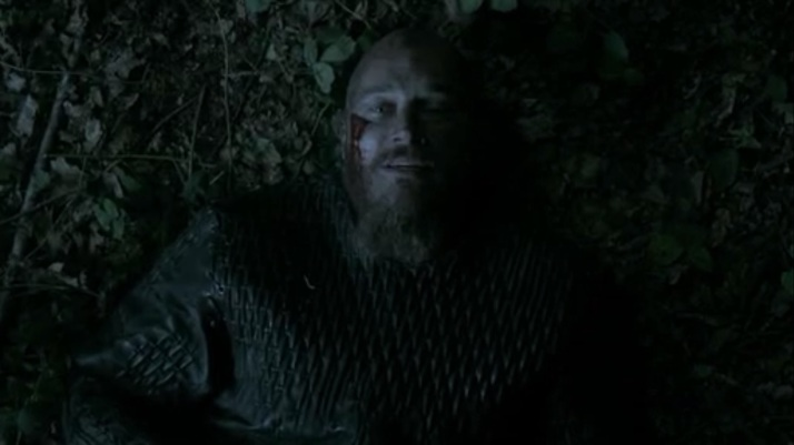 ragnar to athelstan I wish you were here Paris is every bit as beautiful as you said.  I am determined to conquer it now