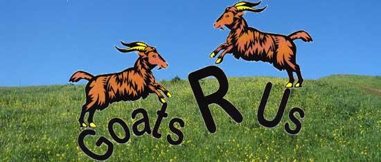 R Goats Goats R Us   Ti...